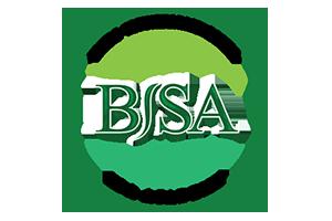 Bali BISA