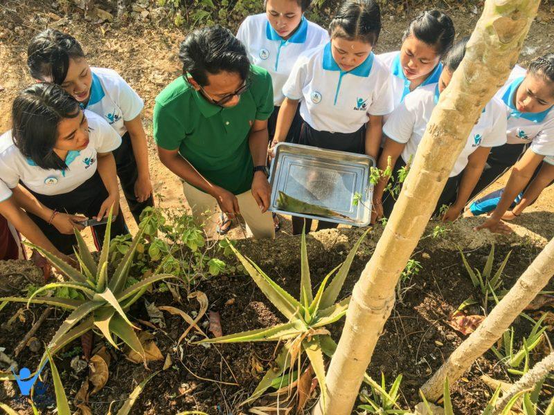 Organic Farming and Food – Intake 41